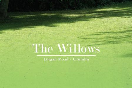 the-willows-cover